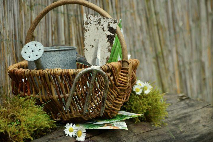Je tuin duurzaam inrichten