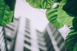 Aantoonbaar duurzaam bouwen: ISO 14001 en BIM