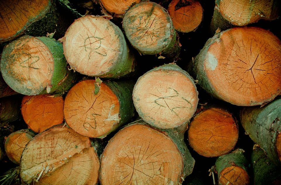 Voordelen eikenhout