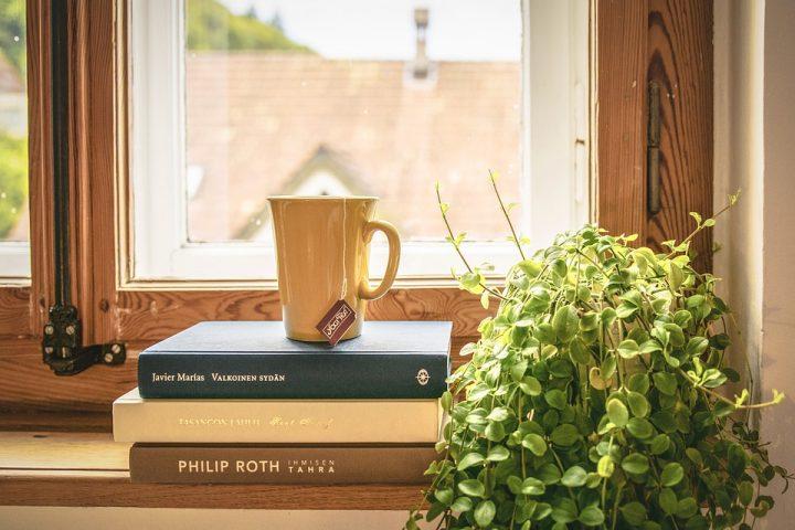 Waarom je planten in je huis moet plaatsen