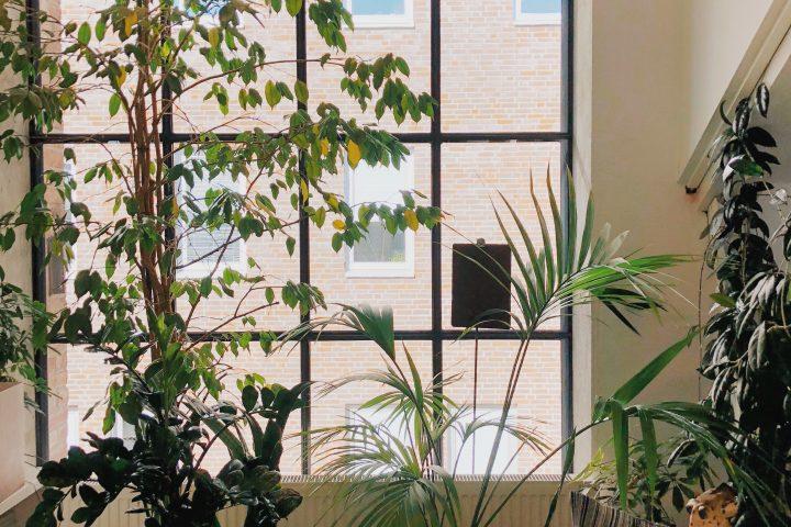 3 tips om je huis optimaal te isoleren!