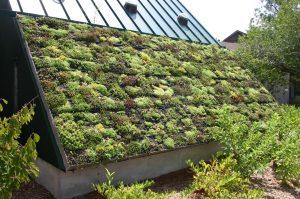 Een duurzaam huis, hoe doe je dat?
