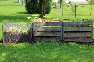 Tips voor het aanleggen van een duurzame tuin