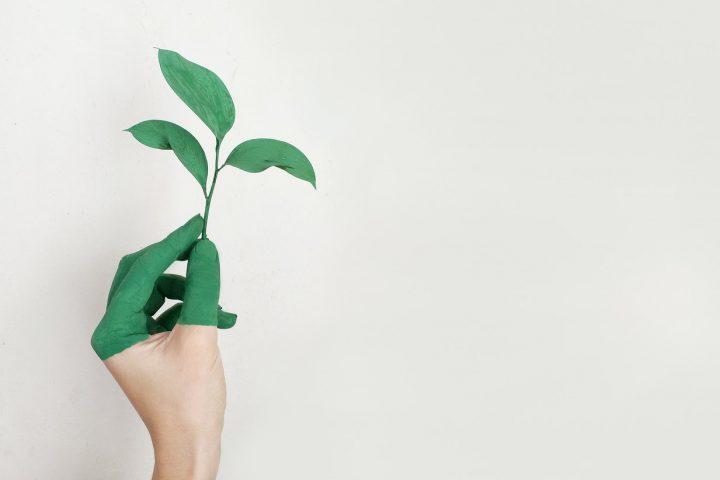 Je huis duurzamer maken? Dit zijn de beste opties!